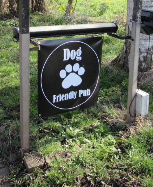 Dog friendly